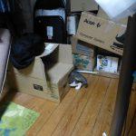 ちょっと前に作ったレオのダンボール箱基地