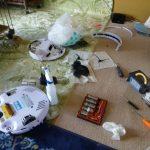 【超悲報】ロボット掃除機、子猫のウンチを巻き込んでた!【グロ注意】
