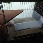 【掃除関係メモ】猫達の2階のトイレを変更