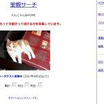 猫を預けたい人と預かれる人をマッチングするサイトが開始